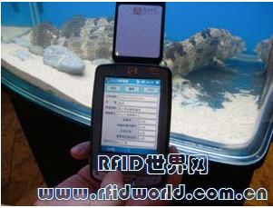 透过RFID应用 让你吃鱼吃的健康、吃的安心