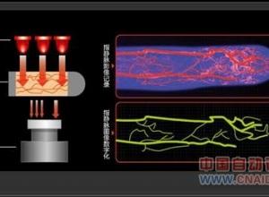 指静脉识别技术的最新发展与应用